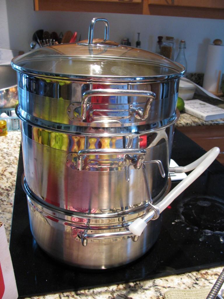 Ell uses a steamer/juice. I borrow my daughter's Jack La Lanne juicer.