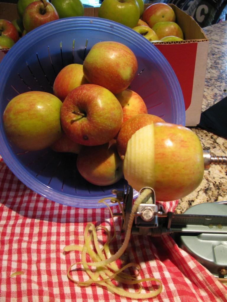 Peeling apples for sauce.
