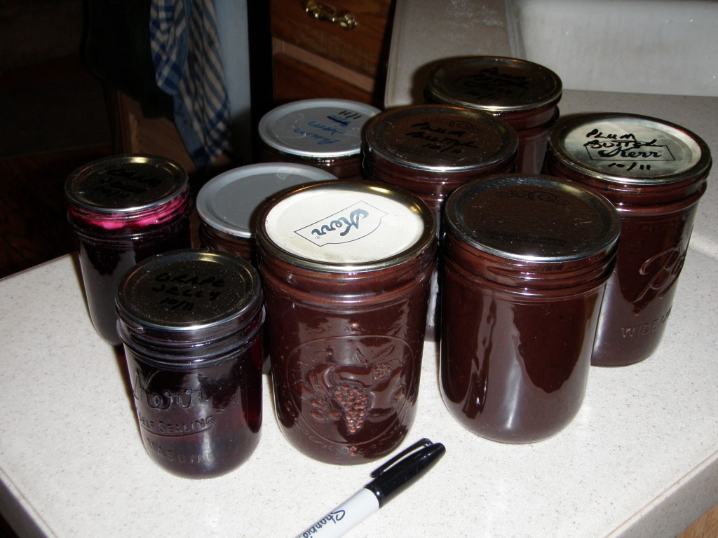 Jam and jelly made without a water bath.