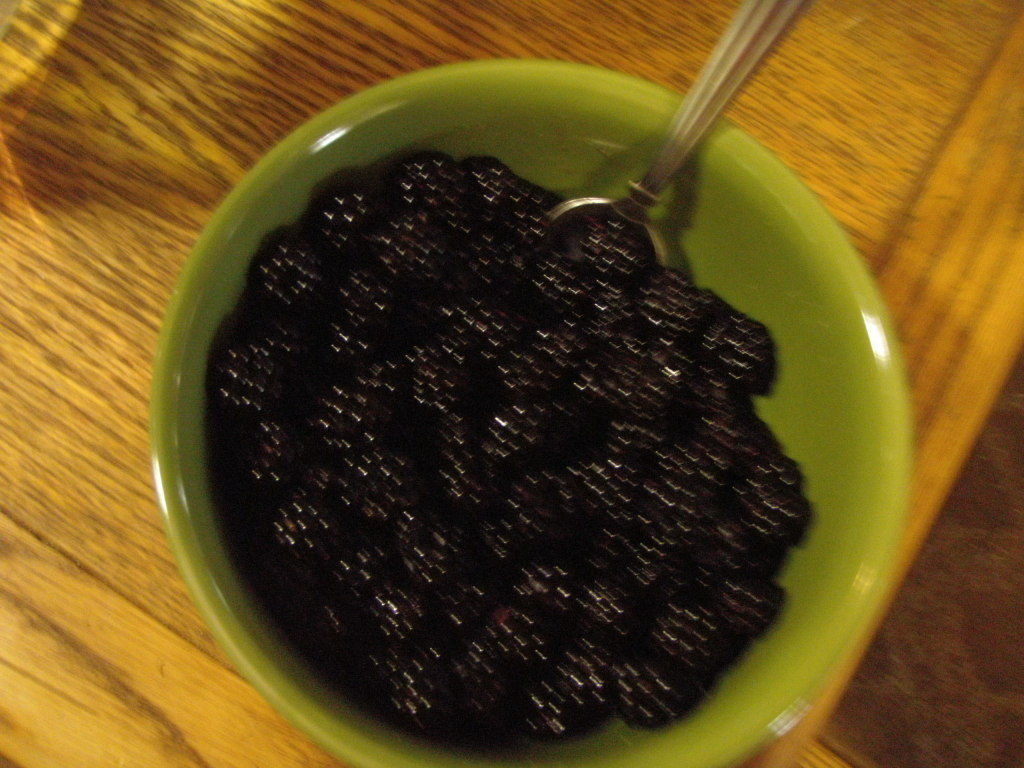 Blackberries - it's what's for breakfast!