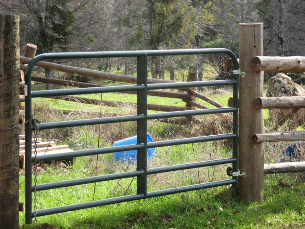 A metal gate like this is better for a corral.