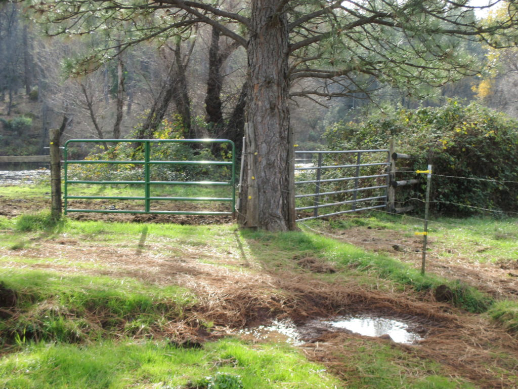 Gates like these are handier for working livestock. When opened to the rear, they form a handy alleyway to move critters from one pasture to another.